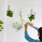 Upside-Down-Sky-Planter-For-Indoor-Gardens-5